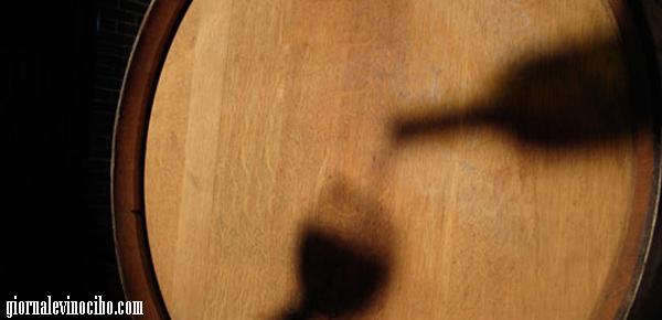 vino geppetto