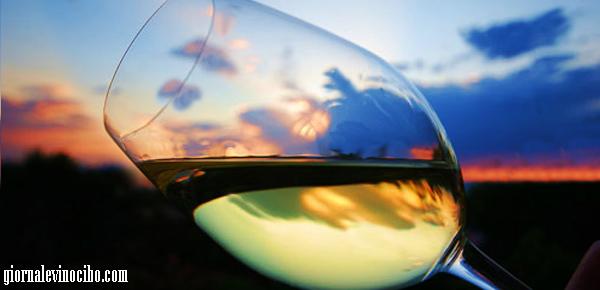 bicchiere terlan giornalevinocibo
