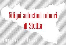 sicilia vitigni autoctoni minori