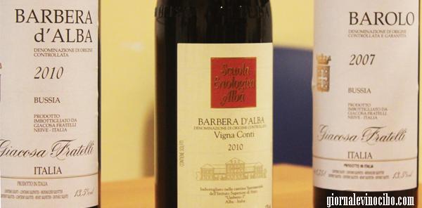 tasting vini piemonte barolo