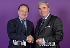 vinitaly bordeaux home