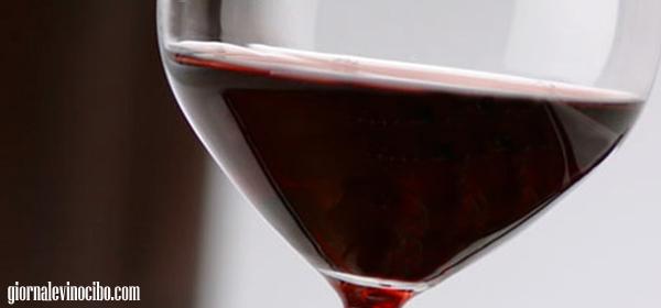 merlot vino