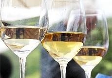 vino bianco solfiti