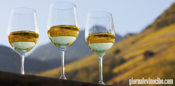 tre bicchiere Gewurztraminer