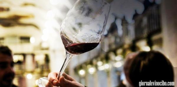 merano 2013 i vini