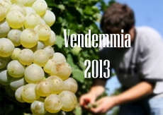 vendemmia 2013 home