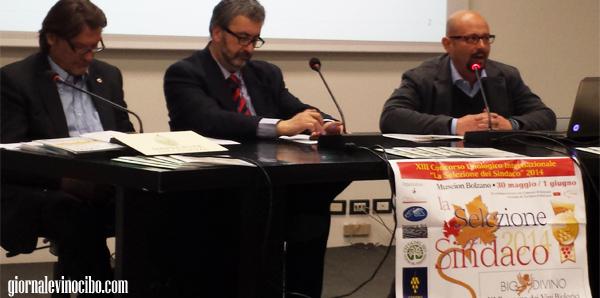 selezione del sindaco 2014 conferenza stampa