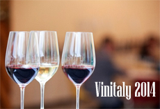 vinitaly 2014 degustazioni