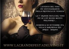 la grande festa del vino 2014 a mirano