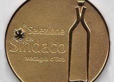 medaglia oro selezione del sindaco