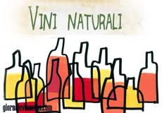 vini naturali 2